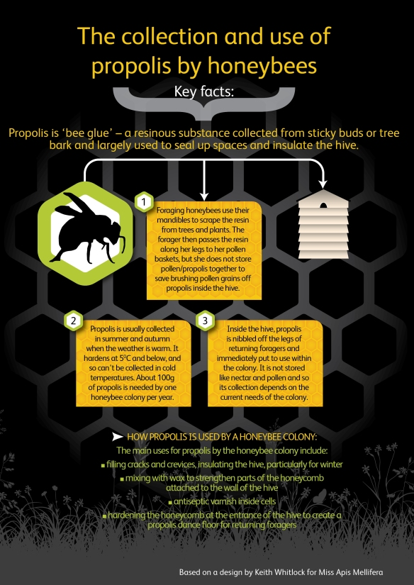 pollen collection infographic
