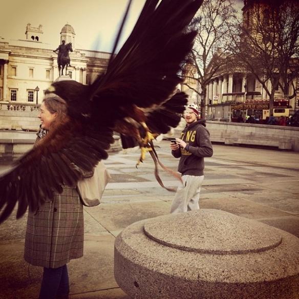 03 hawk