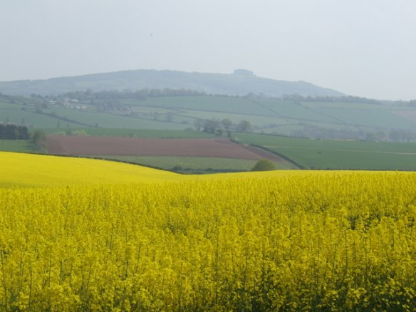 Layers_of_land_-_geograph.org.uk_-_407276