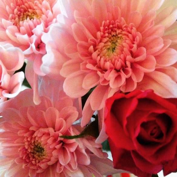 valentines flowers pink