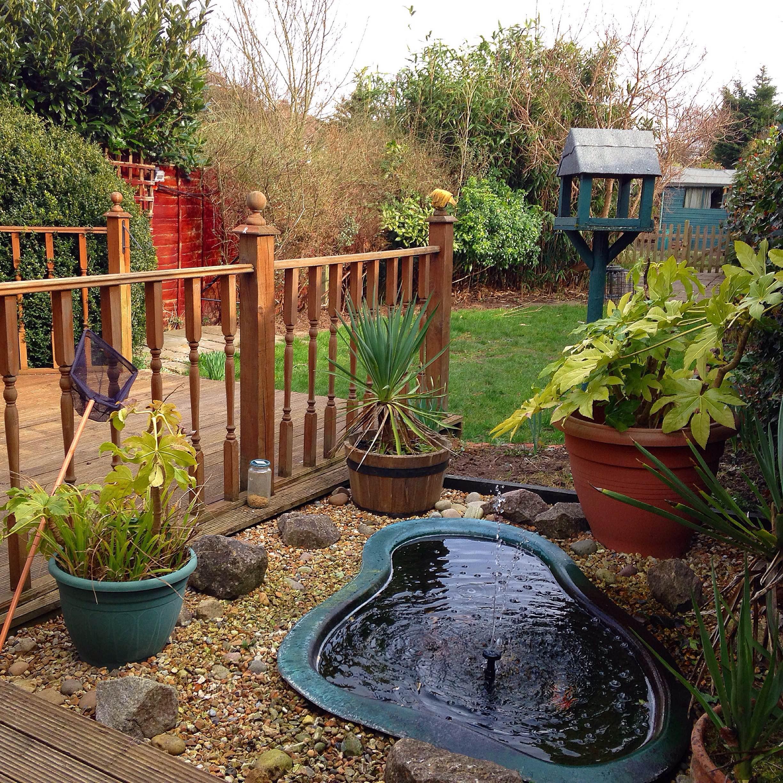 Gardens | Mrs Apis Mellifera | Page 2