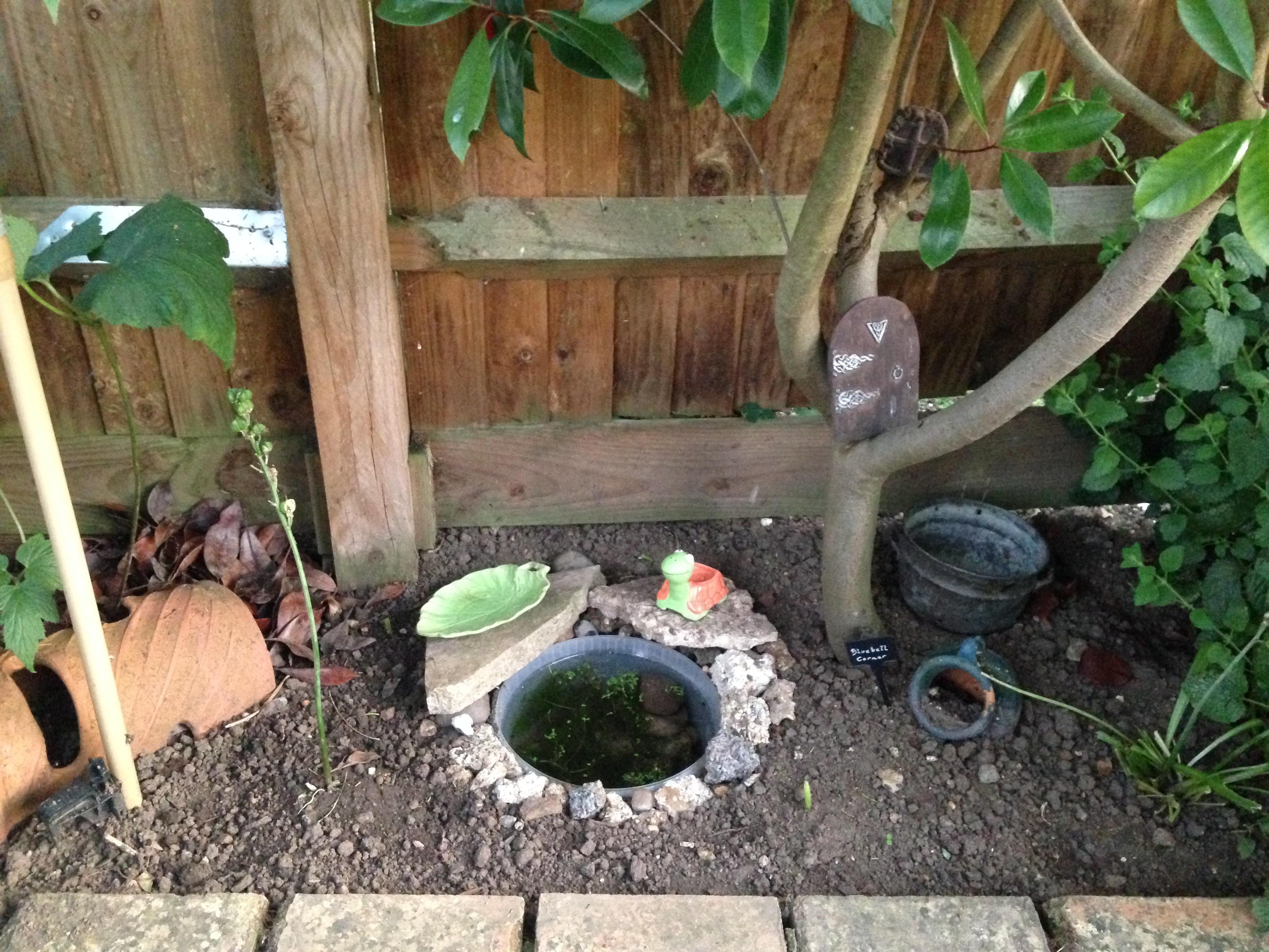 Backyard Frog Pond frog pond 1 | mrs apis mellifera